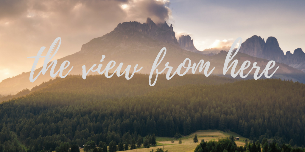The View from Here | developing writers